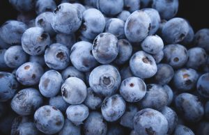 Bolesti i gajenje borovnice