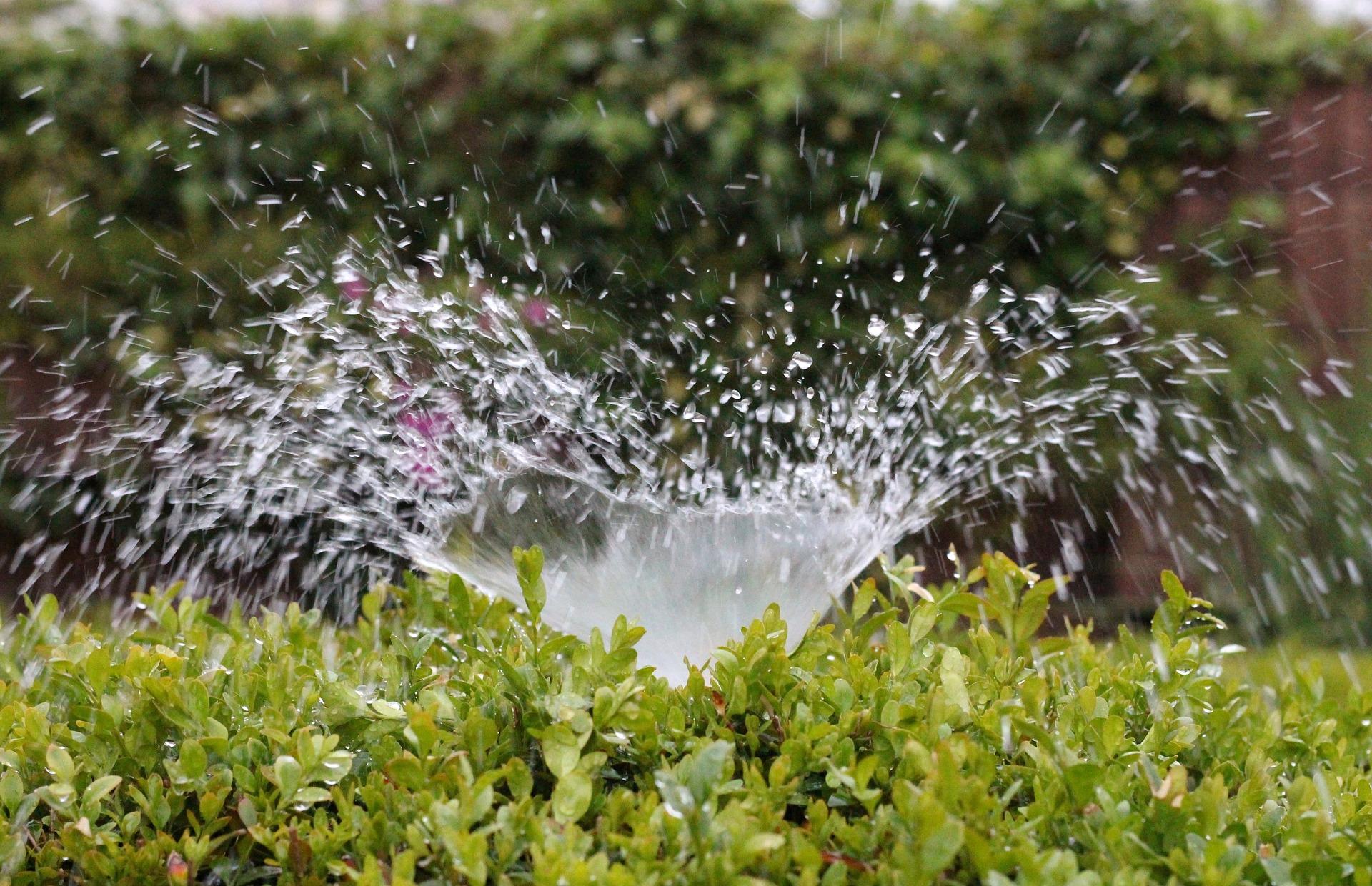 Navodnjavanje vodni resursi