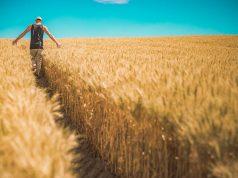 Podsticaji za mlade poljoprivrednike