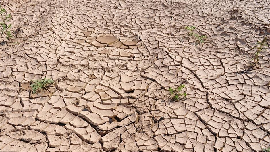 Degradacija tla