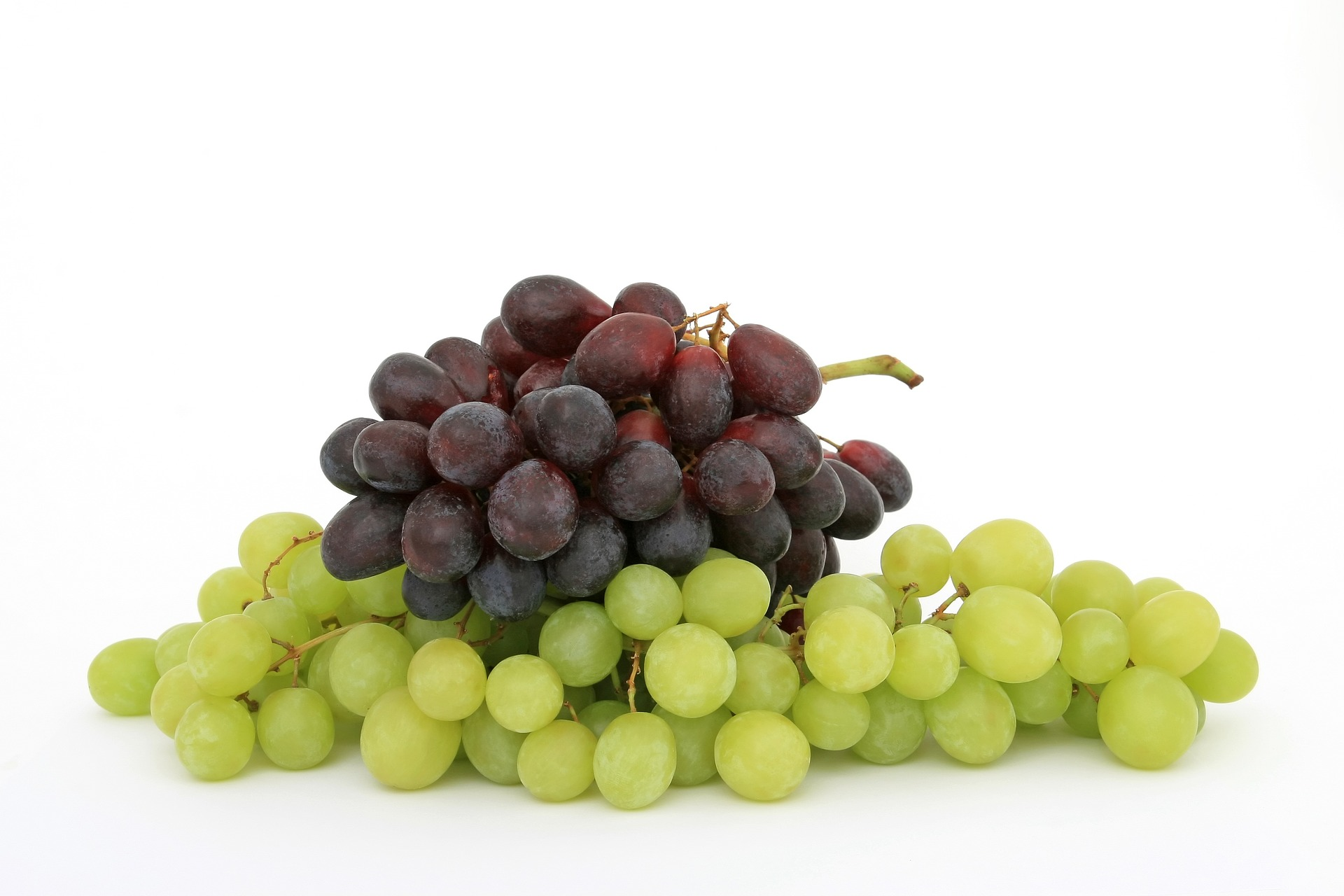 Bele i crne sorte grozdja