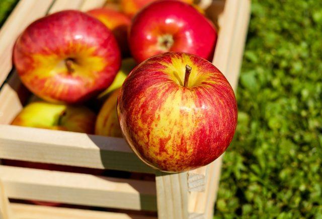 Cena jabuke 2018