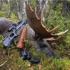 lov na jelene
