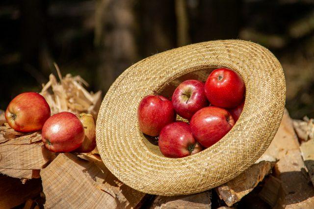 Najzastupljenije voće na našim trpezama – jela sa jabukama