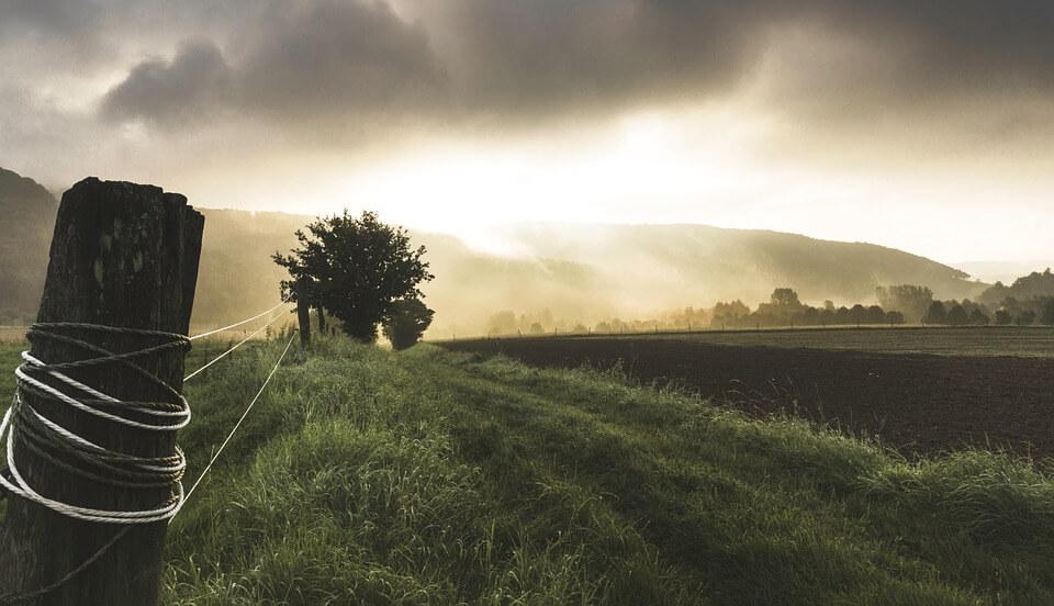 pročitajte i - kakav je uticaj srpskog seljaka na privredni rast