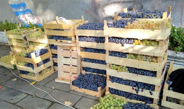 cajas de uvas