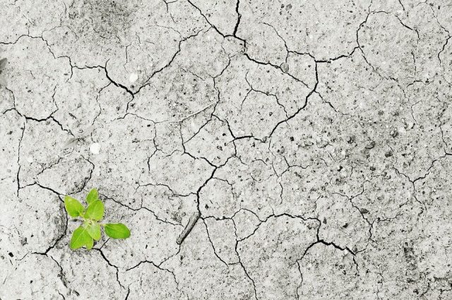 foto: Pixabay, velika suša koje je pogodila Severnu Koreju