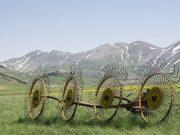 foto: Pixabay, opština Negotin ima 70.000 hektara obradivog poljoprivrednog zemljišta